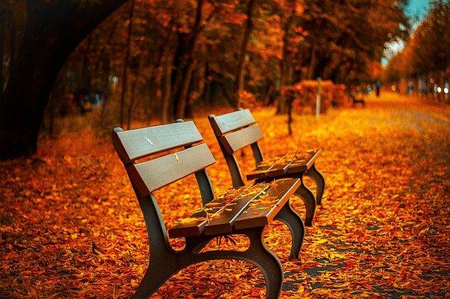 Einsamkeit und Psychotherapie